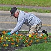 Volunteer Gardeners