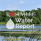 Drinking Water Report