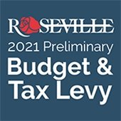 Preliminary Budget, Tax Levy