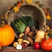 Fall Harvest Family Day