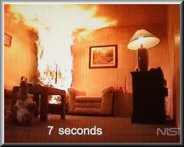 Christmas Tree Fire Dangers Roseville MN Official Website - Christmas Trees On Fire