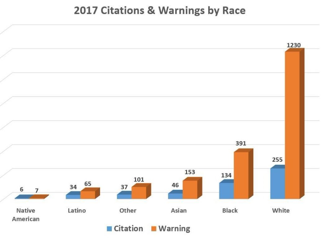 2017 Citations & Warnings by Race