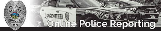 RV Online Police Report_Normal