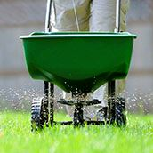 Lawn_Fertilizing